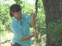 Elise Sherrod, field assistant, 2011 and 2012