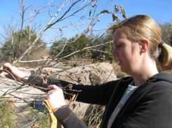 Melissa Hinten, field assistant, 2010