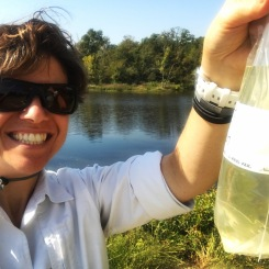 Water sample collected from Sportsman Lake, Seminole Co.