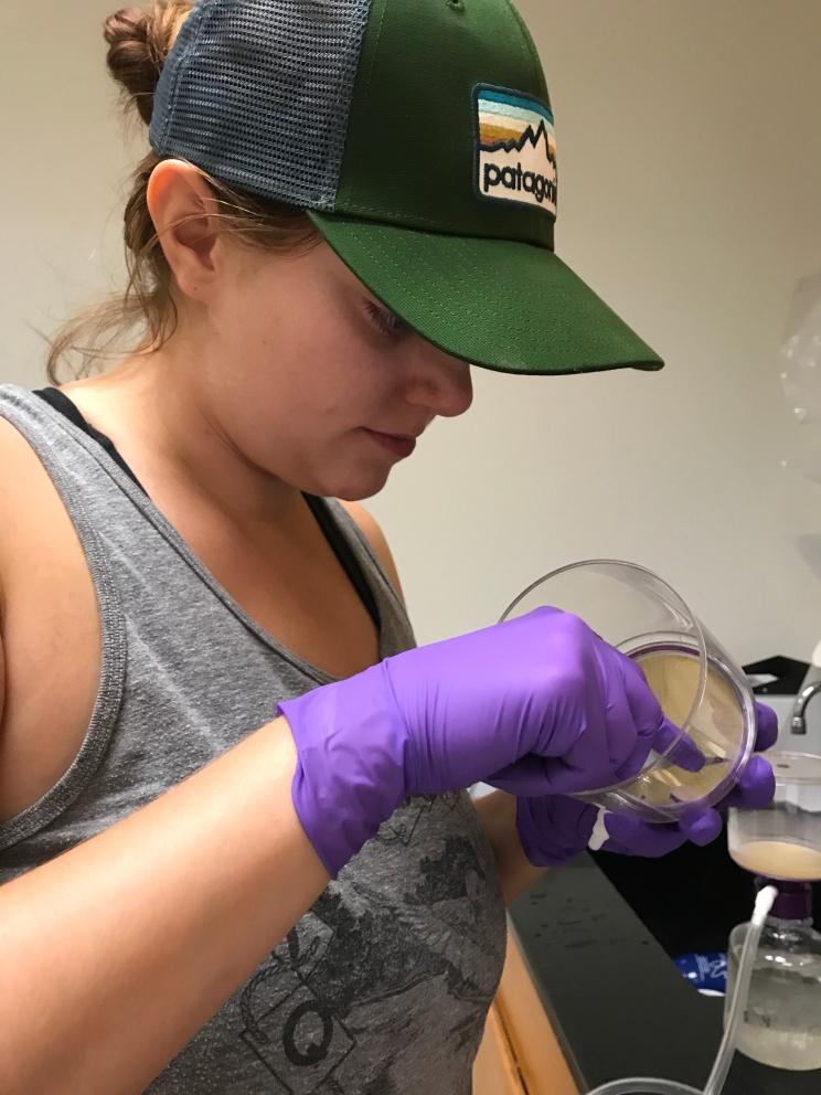 Removing the filter full of eDNA.